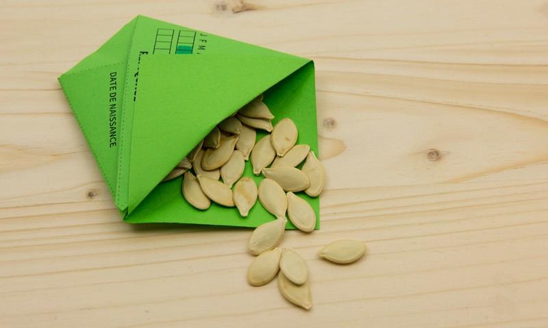 sachet en papier ouvert et graines de courge
