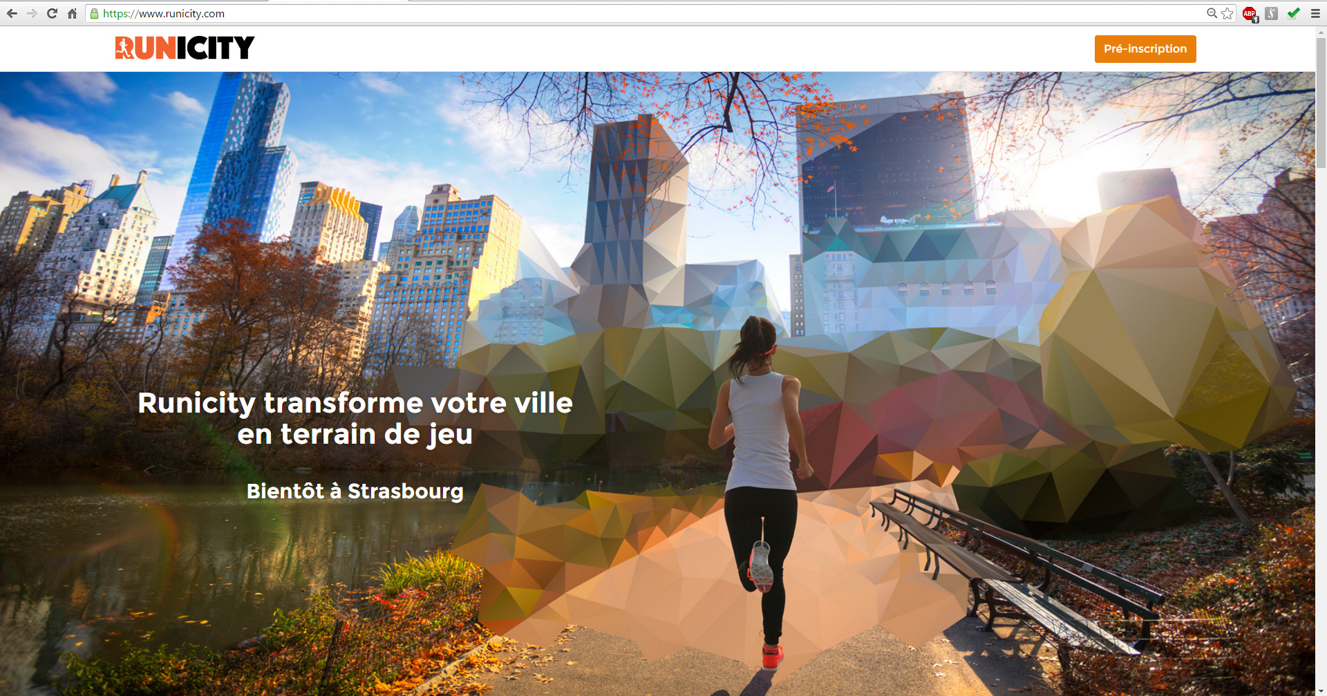 Intégration de l'illustration à la page d'accueil du site web Runicity