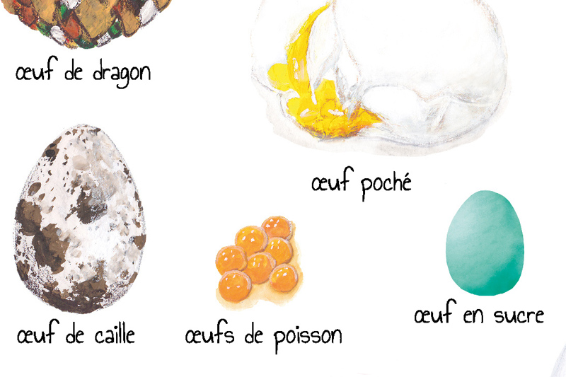 Illustration d'œufs variés